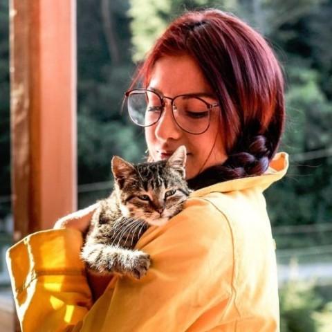 pet insurance importance